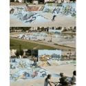Skatepark Troyes