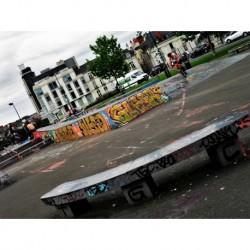 Skatepark Nantes-Ricordau (Notel Dieu)